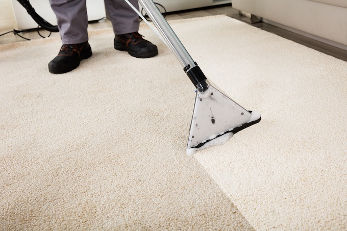 carpets getting cleaned by Flippin Cleaners